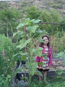 gardenapril09 001